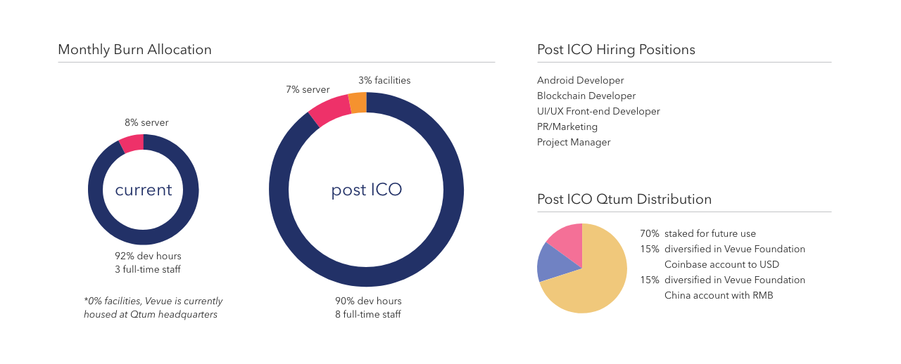 post_ICO_allocation.png