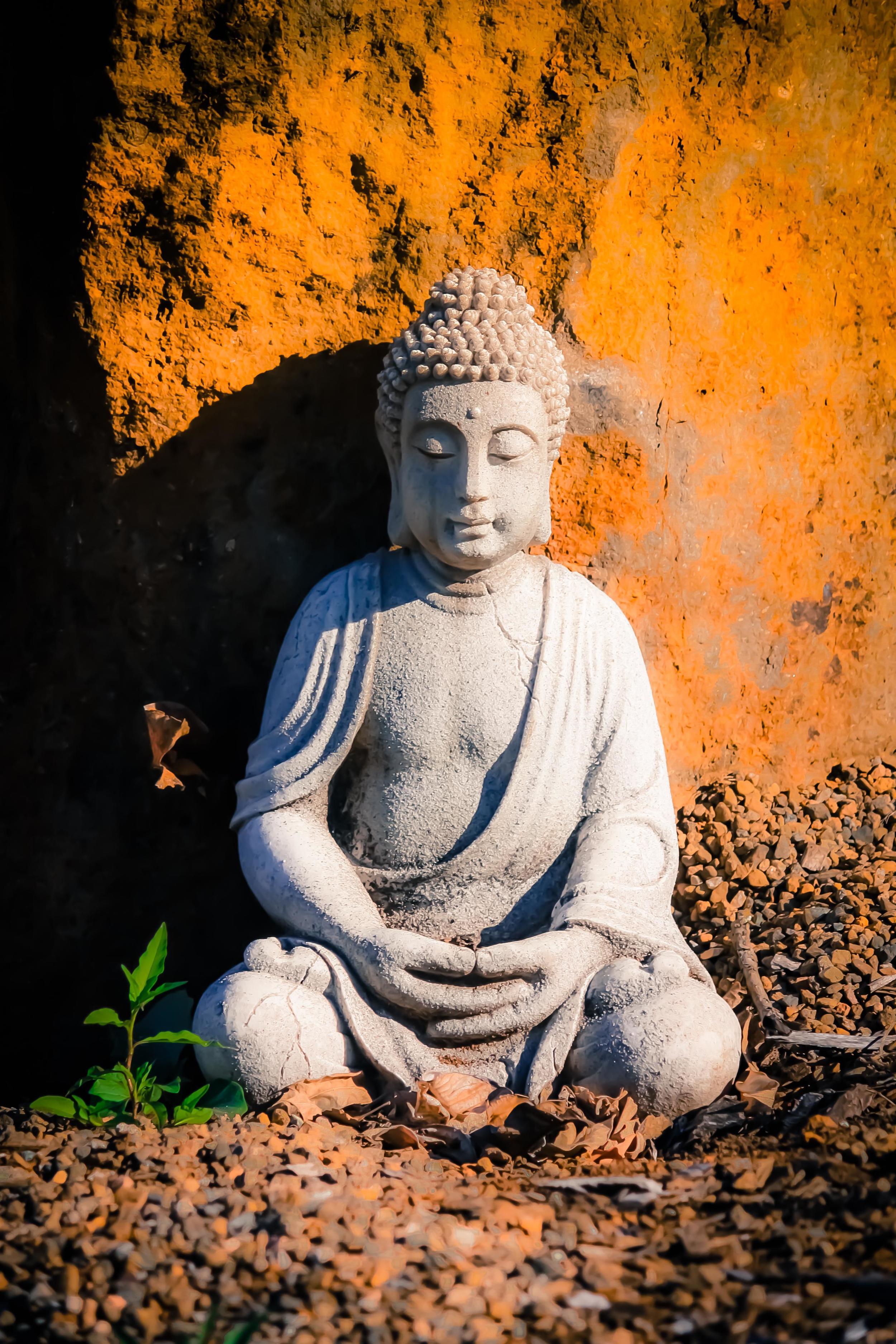 South France Yoga Meditation Retreat