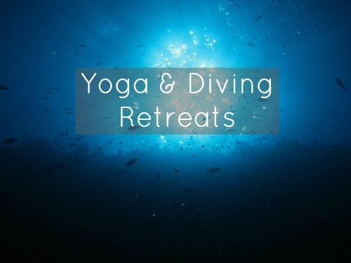 Yoga and Diving Retreats Bali Philippines France | yoga and scuba diving retreats