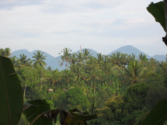 Treasures Sky meets Earth Yoga and Nature retreat Bali Ubud
