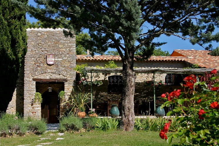 a perfect south France yoga and dance retreat ♥