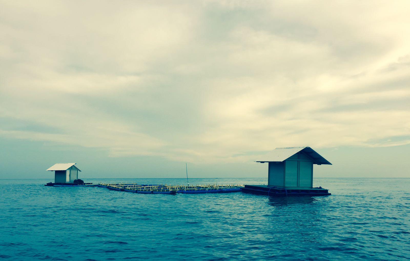 wreck diving bali yoga retreat
