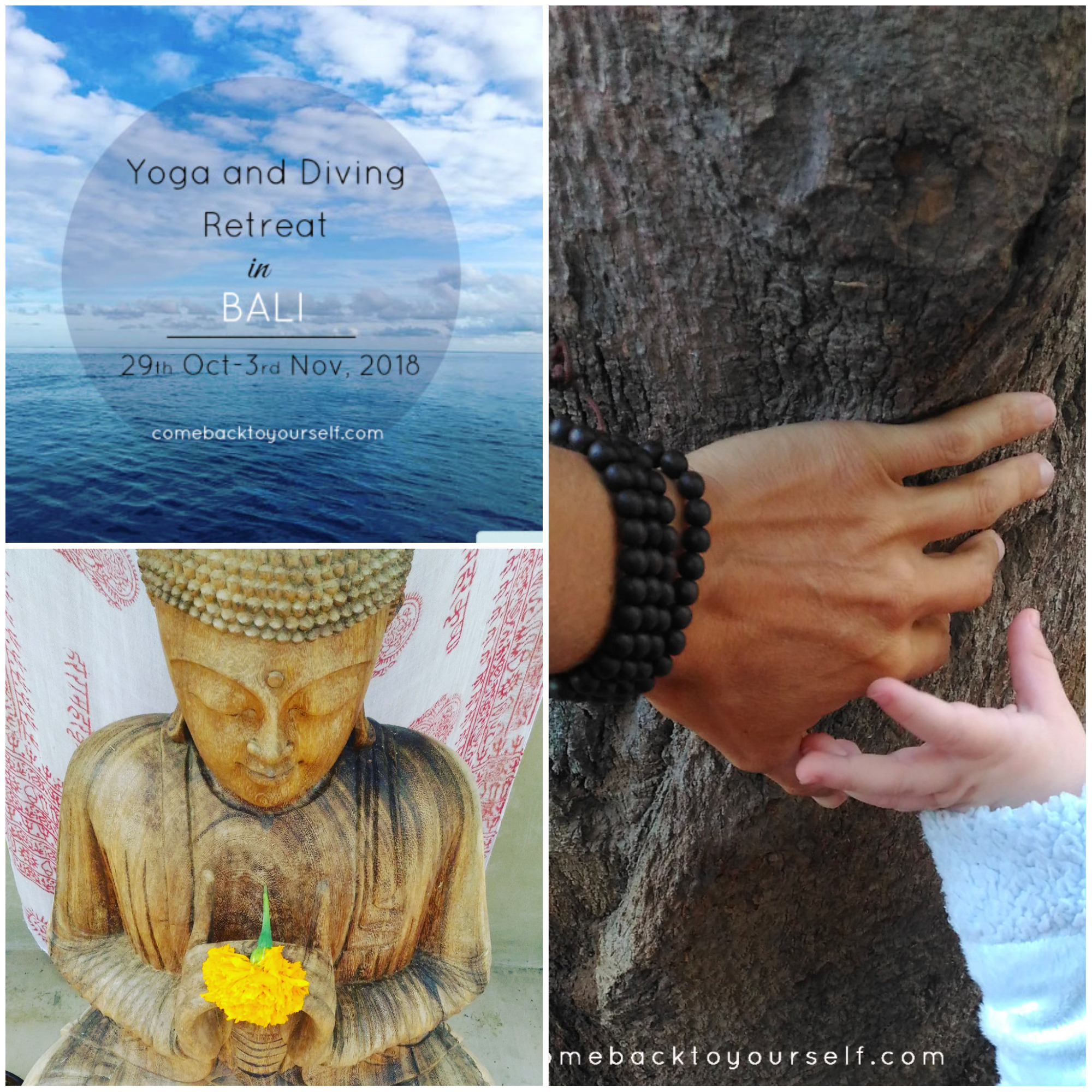 bali yoga diving retreat october 29, 2018 mindfulness come back to yourself retreats