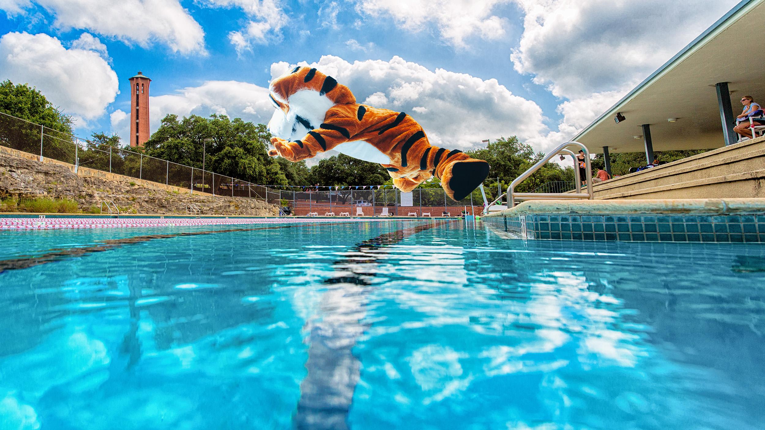 LeeRoy Pool Jump Updated.jpg
