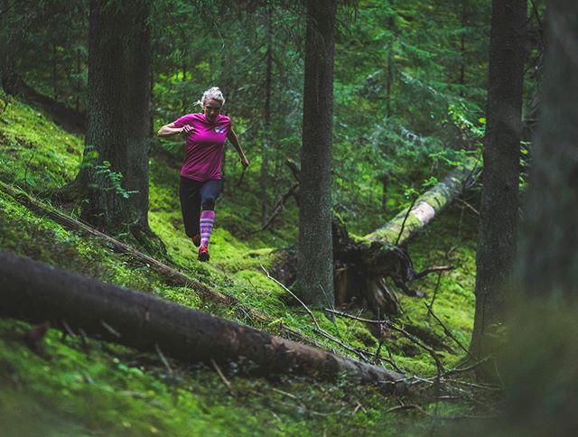 Ex-kilpasuunnistaja ja 9-kertainen maailmanmestari Minna Kauppi kertoo kirjassamme, miten suunnistuskartat ja -metsät ovat muuttuneet hänen uransa aikana. Helppokulkuista metsää tarkoittava valkoinen on korvautunut kartoissa eri värisillä vihreillä eli alueilla, joilla on vaikea edetä. Usein vihreät ovat taimikkoa ja nuorta metsää. Valtaosa Suomen metsistä onkin nuorta, alle 80-vuotiasta. #metsämeidänjälkeemme #metsäkirja #metsä