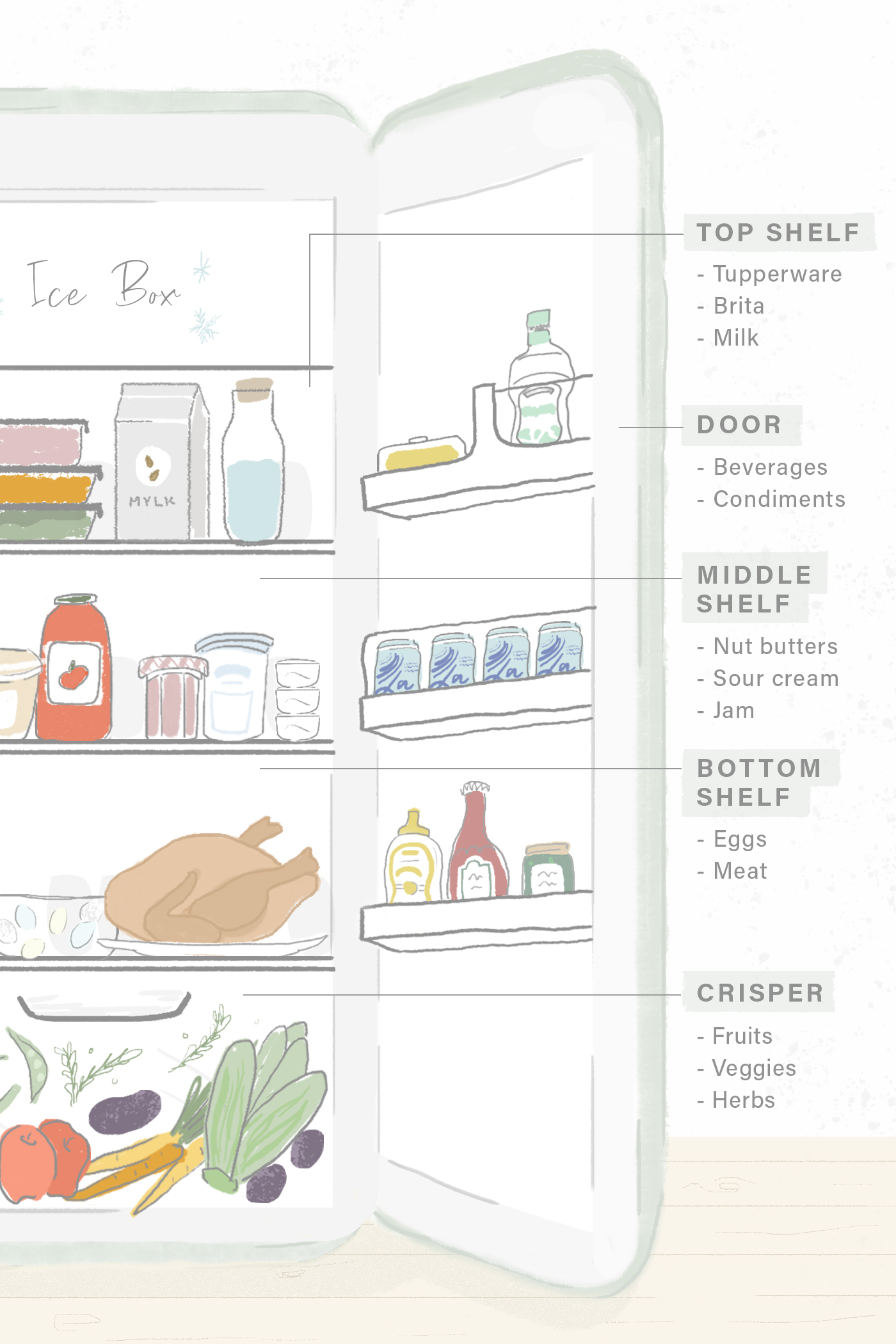 Illustration for a story on how to organize your fridge