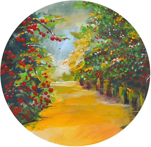Cherry Orchards | Traverse City, Michigan