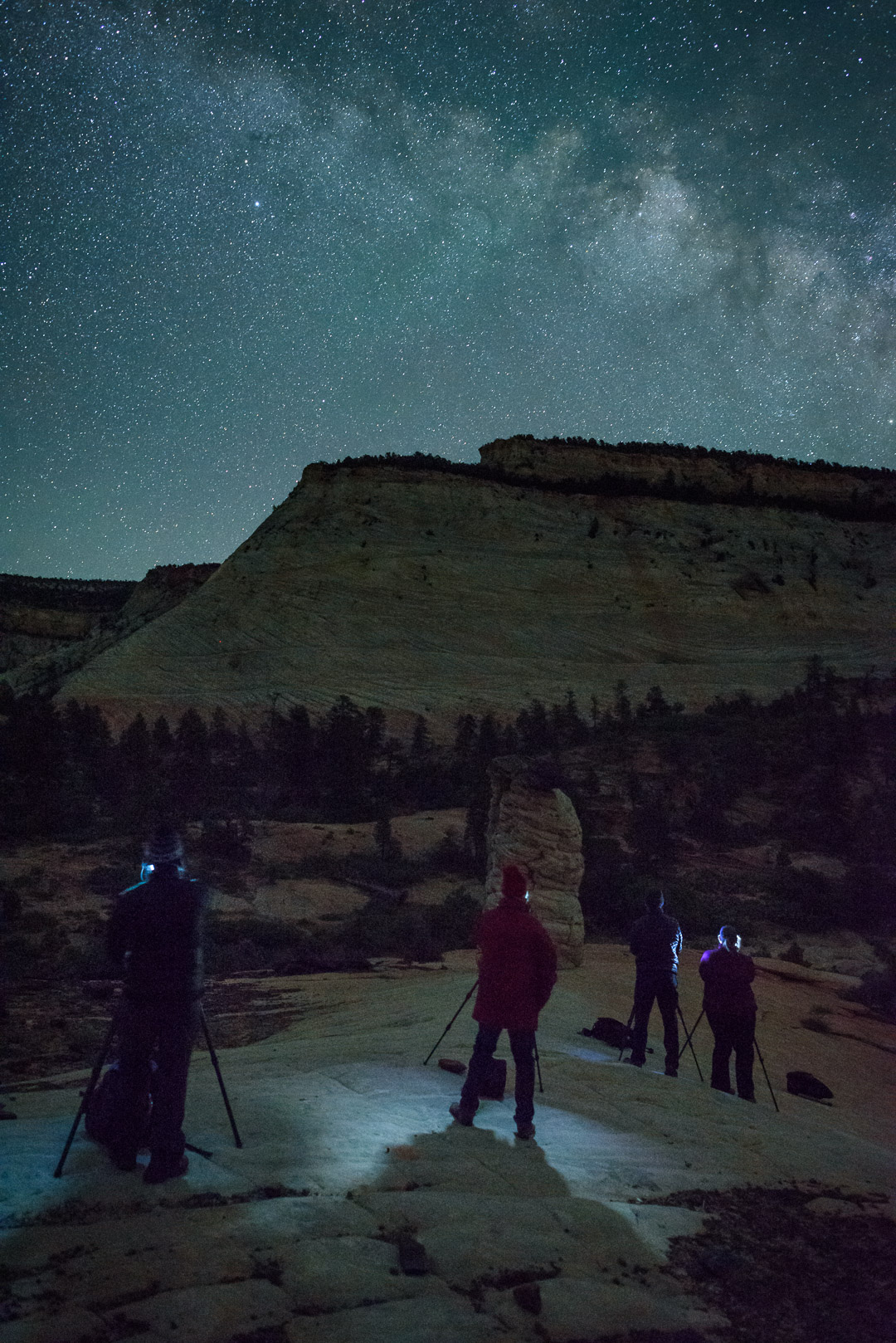 Workshop students in Zion National Park. This view of Checkerboard Mesa faces southeast, and shows movement in the stars that would be visible only in a very large print, or when pixel-peeping at 100 percent magnification.  Nikon D750 , Nikkor  24mm f/1.4 lens . 15 seconds, f/f2.8, ISO 12800.
