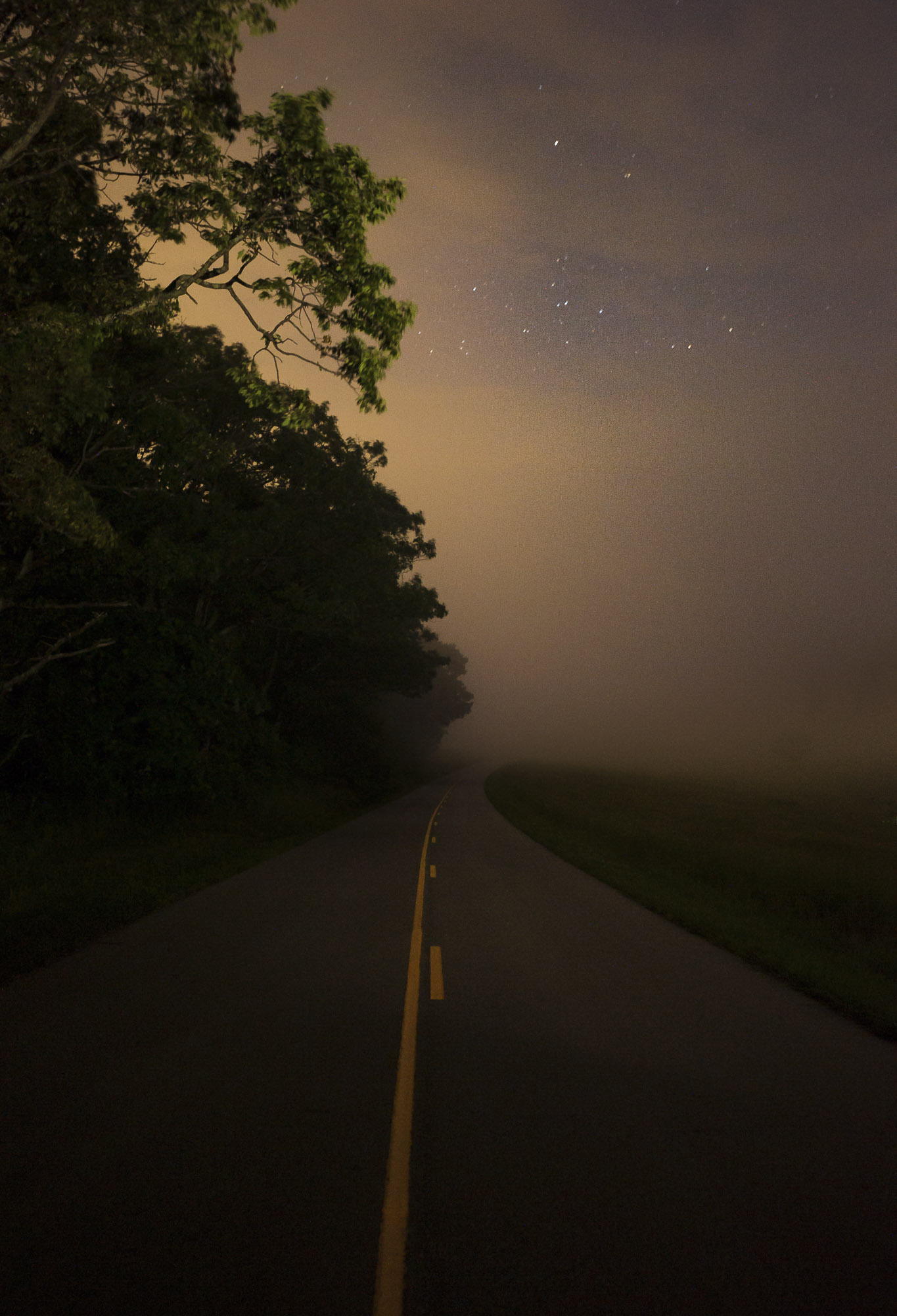 Blue Ridge Parkway_Nicholson__DSC1817-E.jpg
