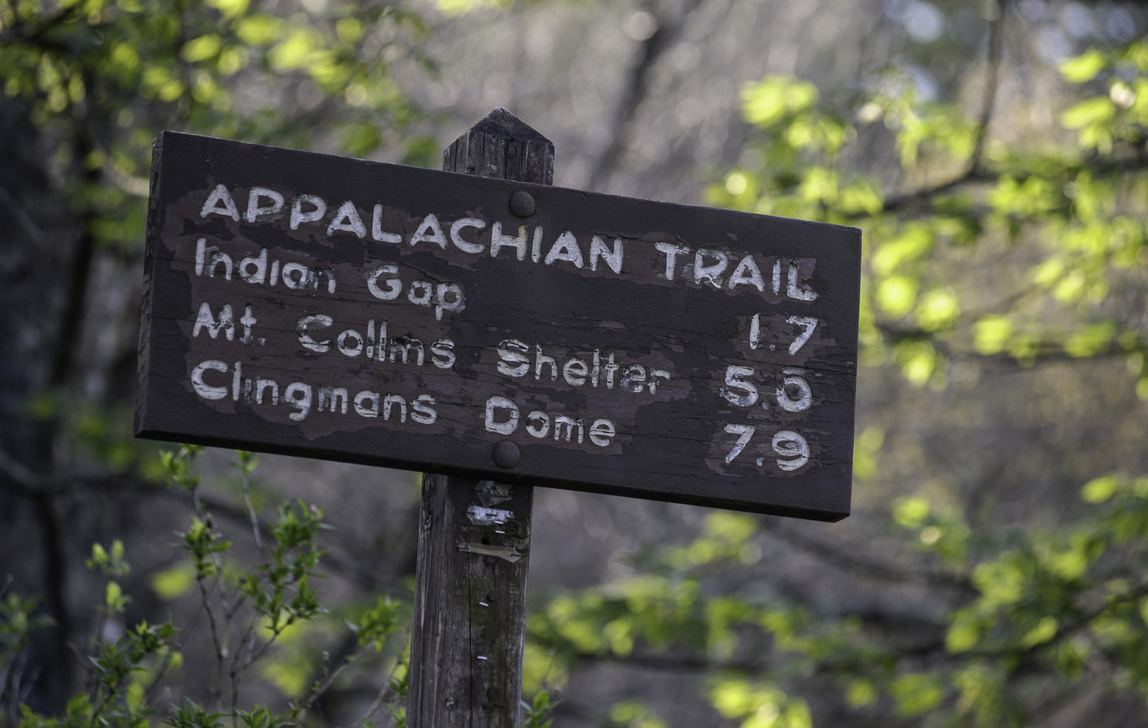 The Appalachian Trail, part of the National Trails System, wanders through some of the most spectacular scenery in the eastern U.S., including through Great Smoky Mountains National Park. © 2013 Chris Nicholson.