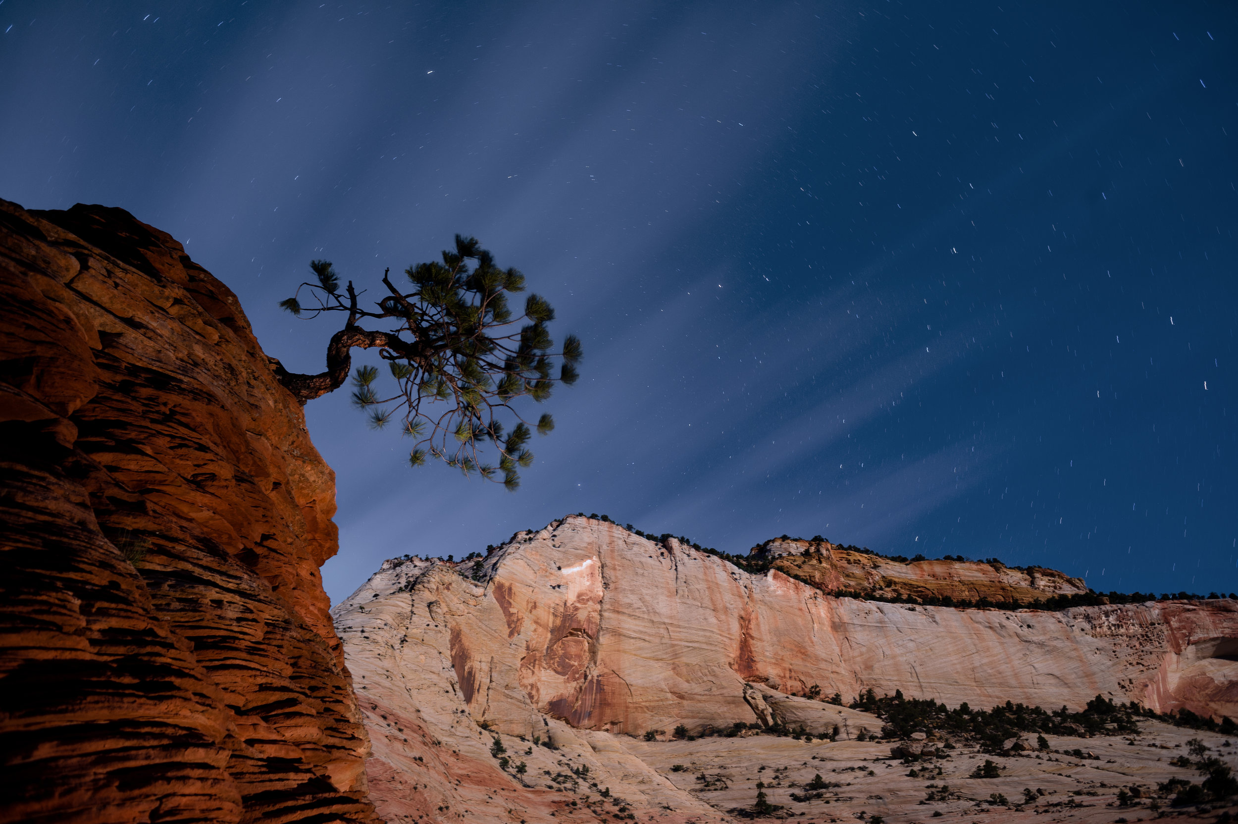 Moon as key light, flashlight as fill.  Nikon D4s with 24mm f/2.8 lens.   3 minutes, F/5.6, ISO 200.