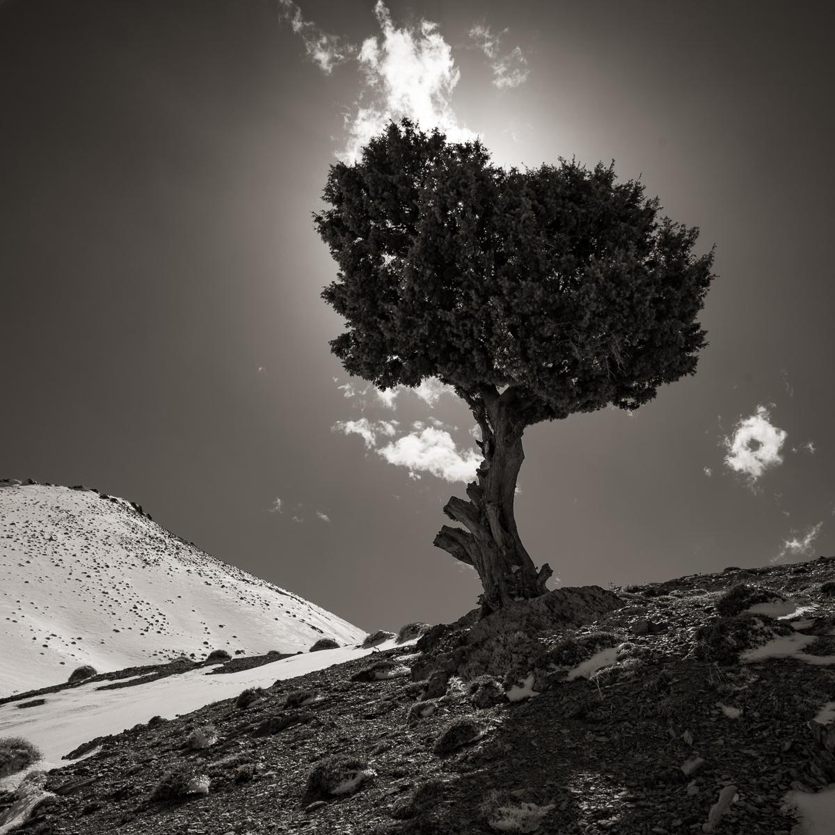 Morocco-2610.jpg