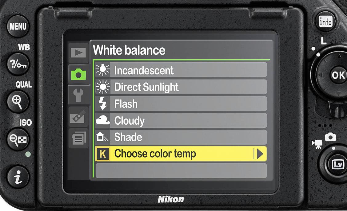 Nikon's White Balance menu.