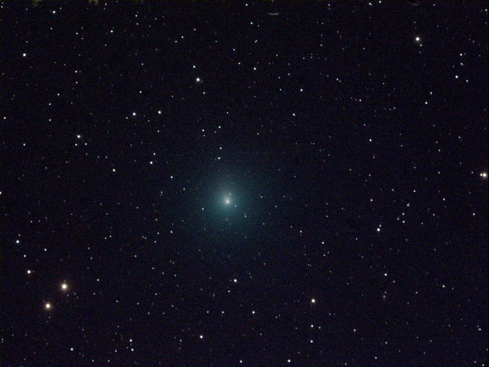 Comet 46P/Wirtanen, courtesy of Victor Ruiz, Siding Springs Observatory, Australia.