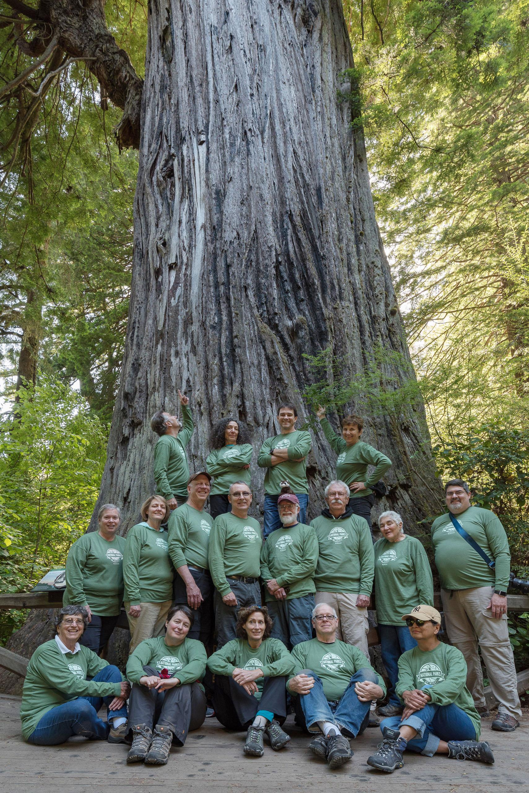 redwood group.jpg