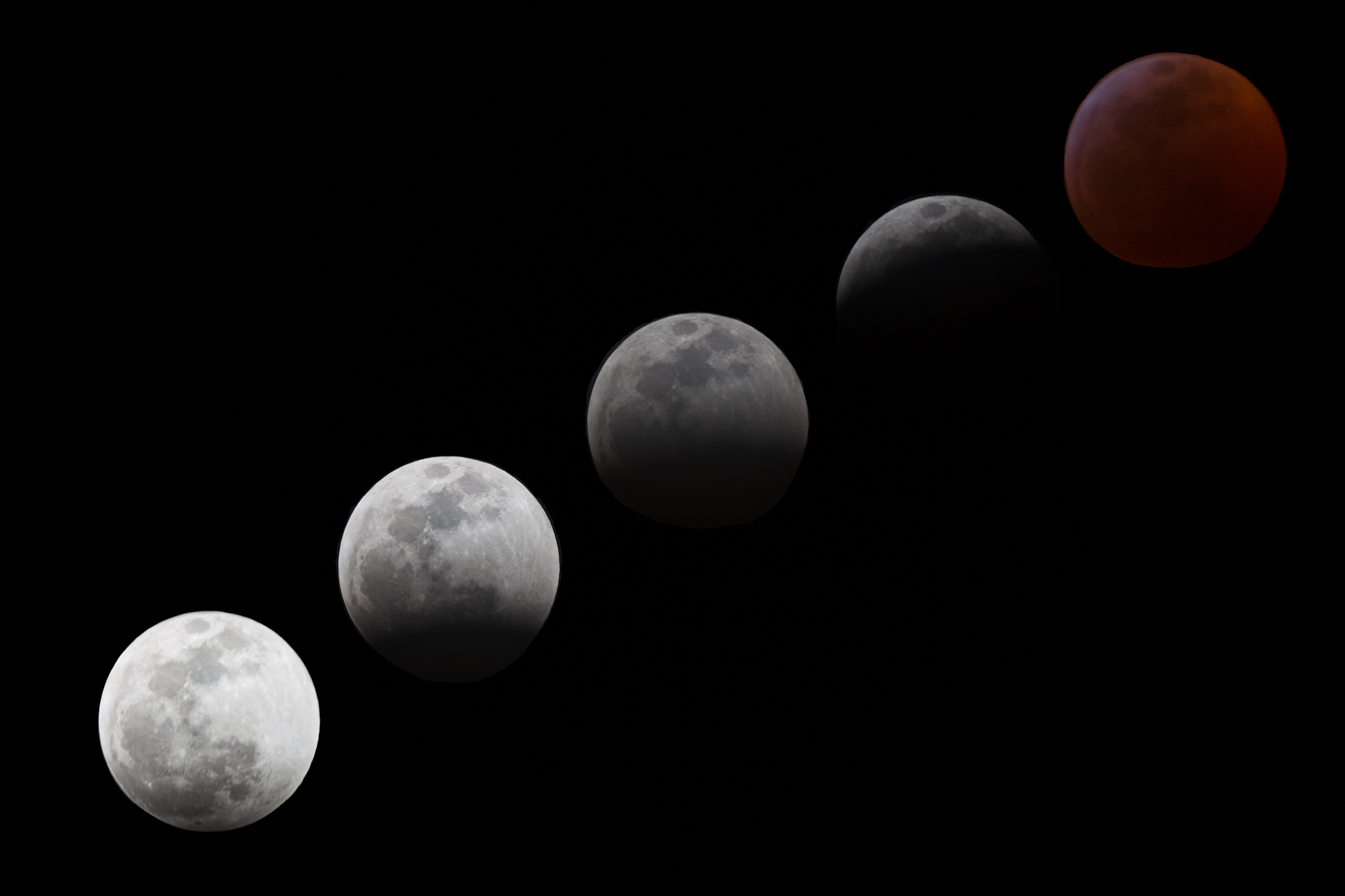 © 2019 Steve Winker,  whereswinker.com .  Canon 6D ,  Tamron 150-600mm f/5-6.3  lens.