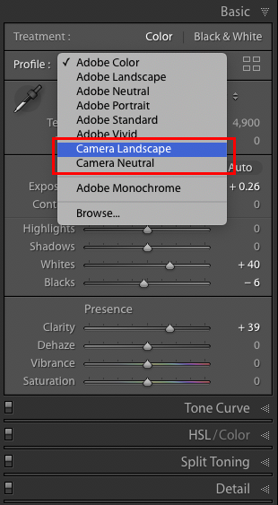 Figure 7. The dropdown list after I added Camera Landscape and Camera Neutral as favorites.