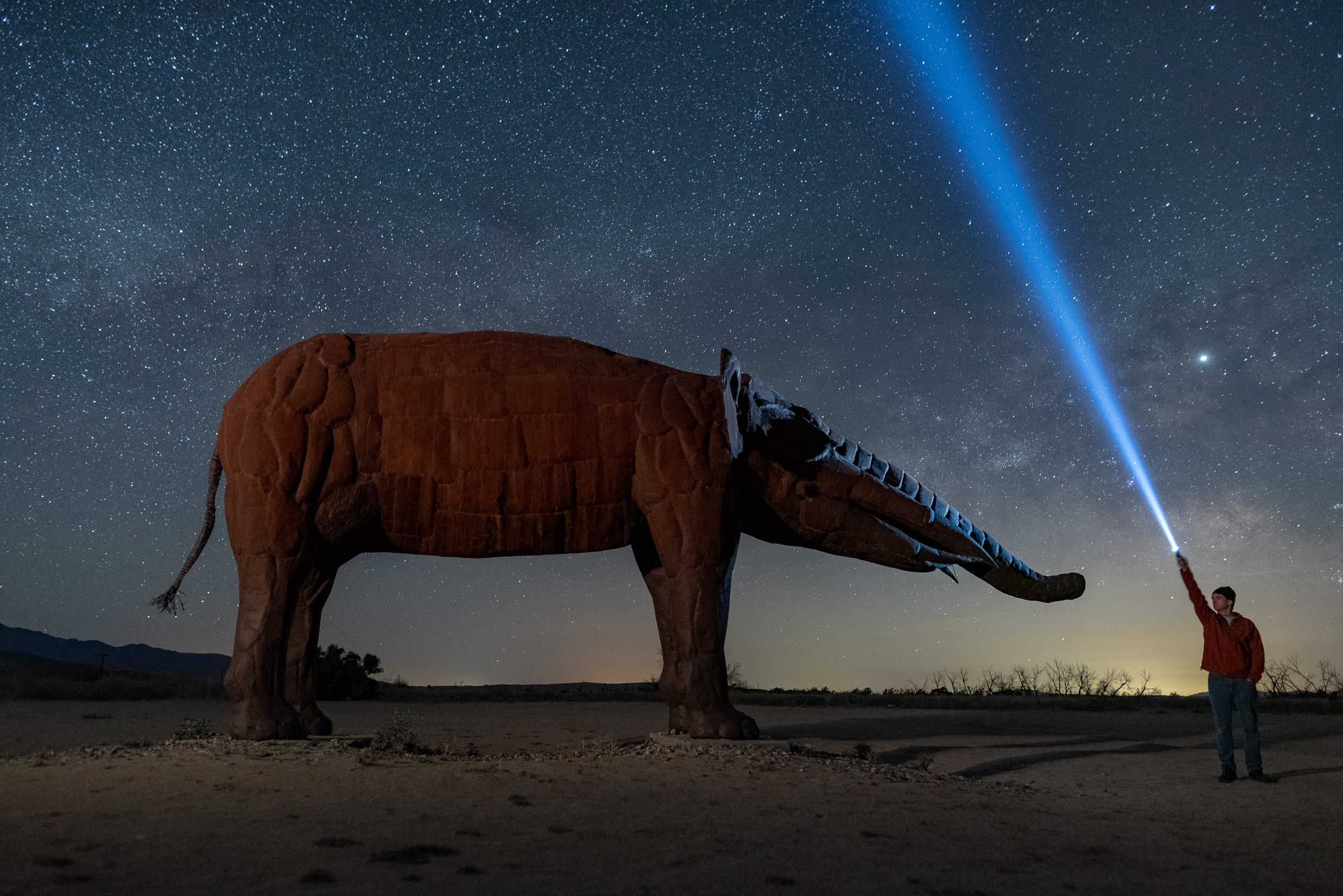 Chris standing beside the gomphotherium, an extinct elephant that once roamed Southern California. Nikon D750 with a  Sigma 24mm f/1.4 Art  lens, light painted with a Coast HP7R. 13 seconds, f/2.2, ISO 6400.