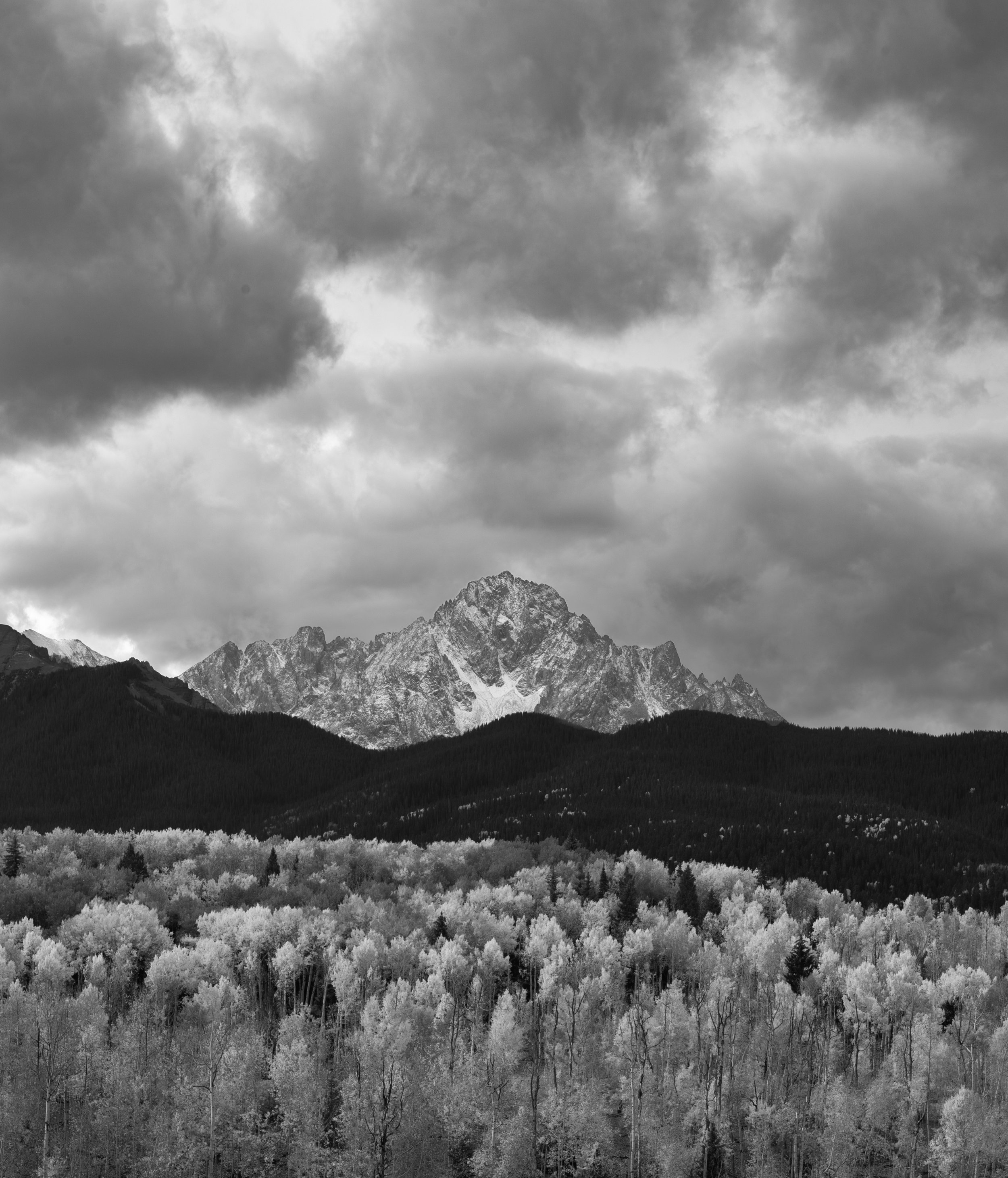 colorado_Tims-Colorado-1.jpg