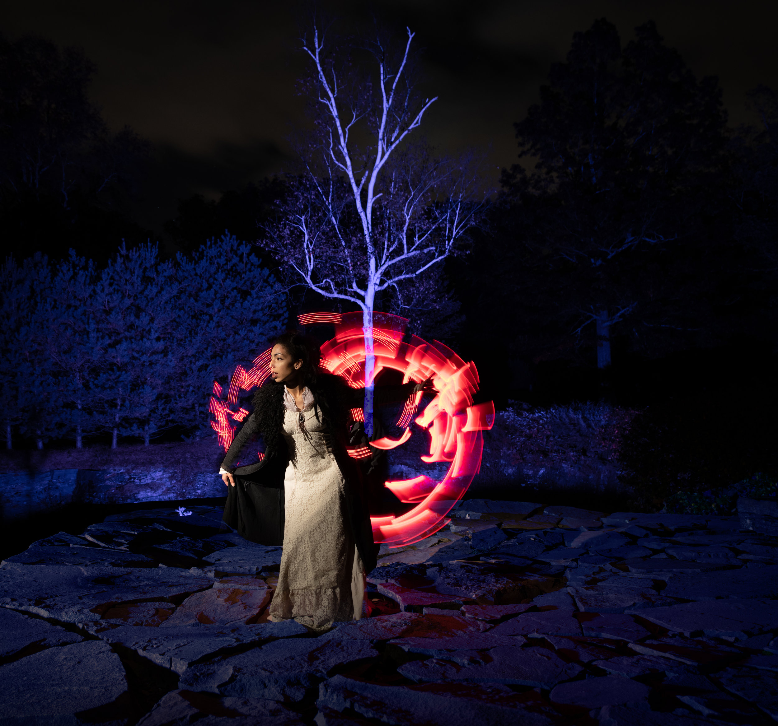<p><strong>Catskill Night Portraiture</strong><br/> October 29-November 3, 2020</p>