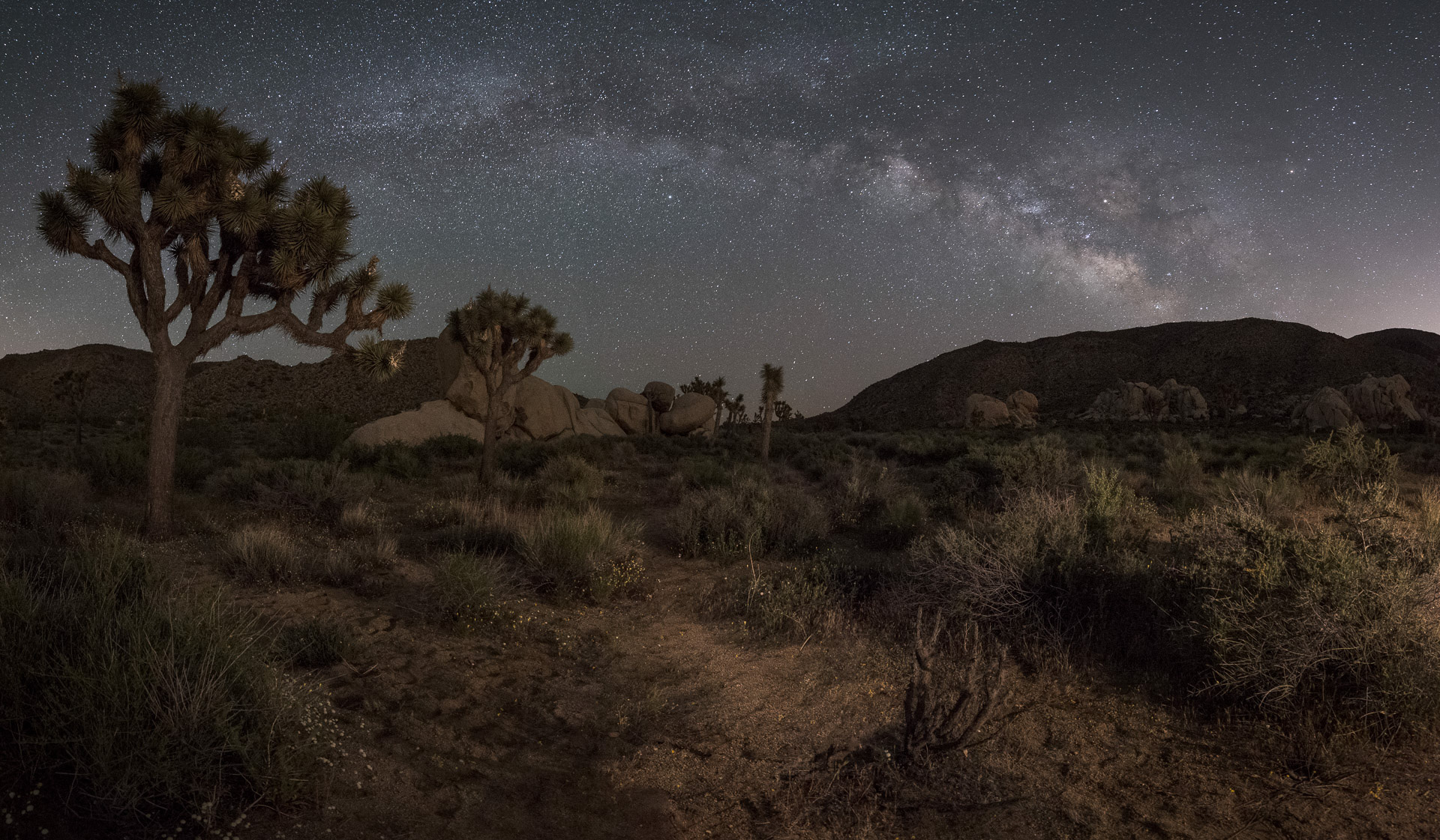 Joshua Tree National Park, © 2017 Lance Keimig