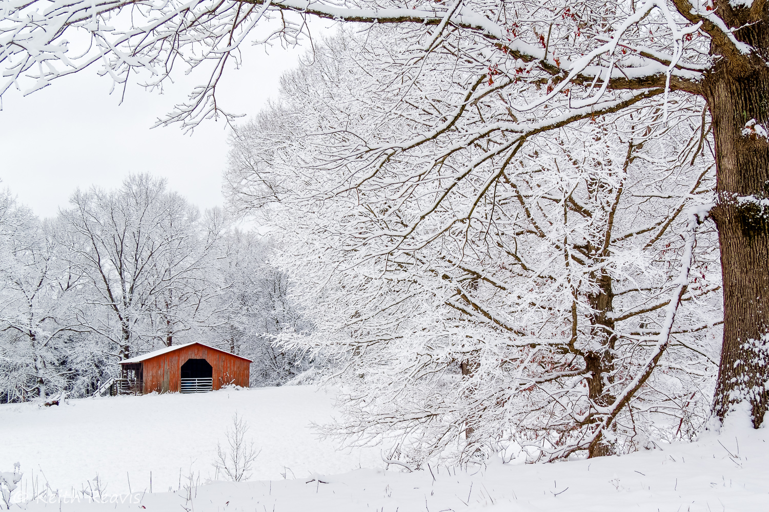 Red Barn in Snow (1 of 1).jpg