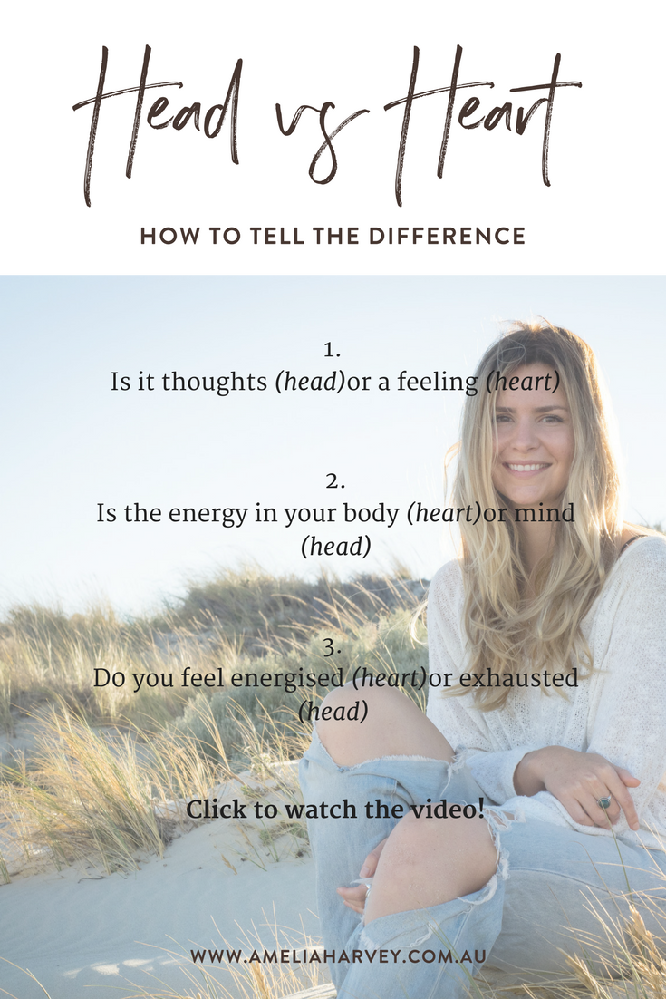 How to tell the difference between your head and your heart by Amelia Harvey, Life Coach.png