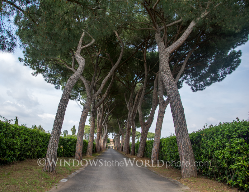 Stone Pines, Appian Way, Roma