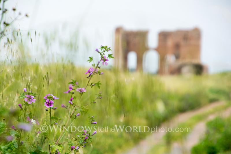 Ancient Rome Vista