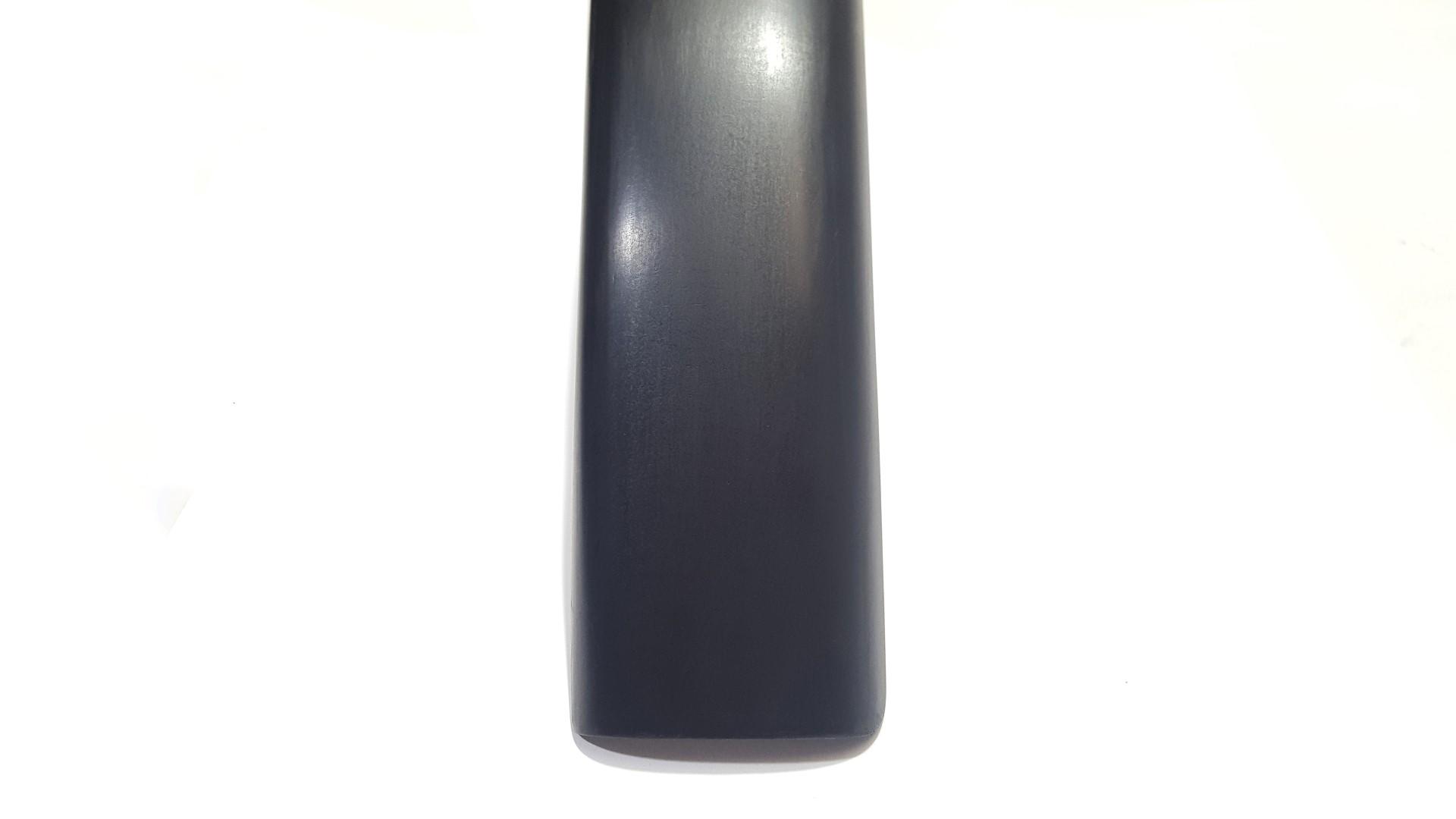 REN-Schmutzfanger-Fenders-Carbon (3).jpg