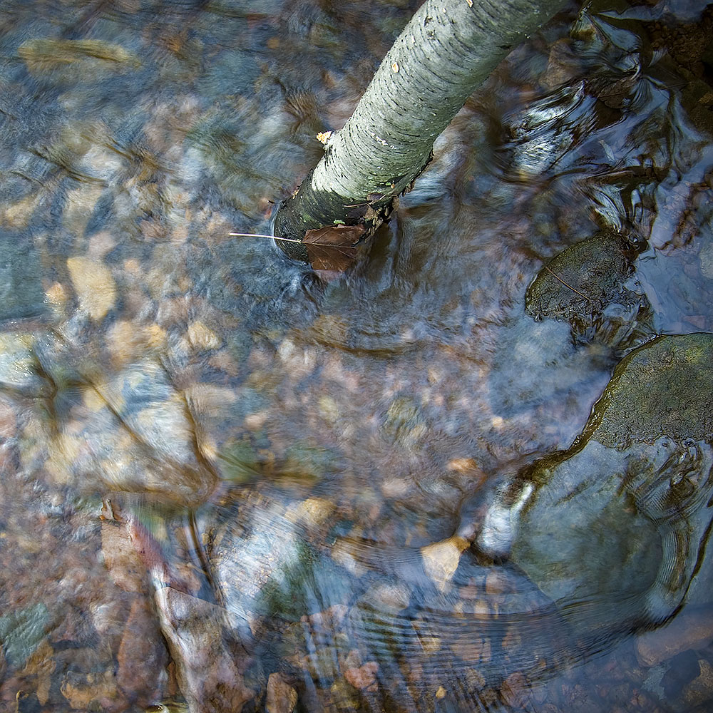 Creek Bed Abstract #27