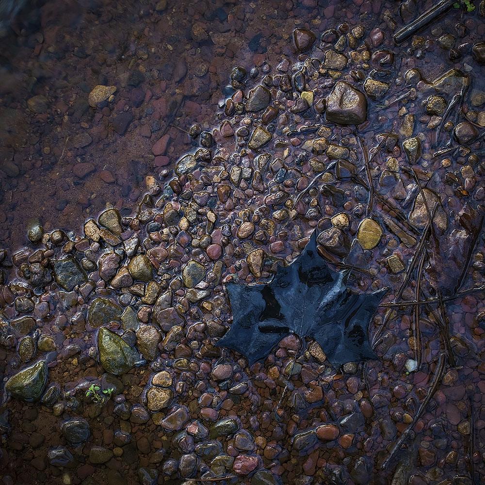 Creek Bed Abstract #32