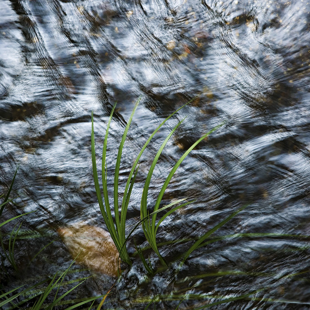 Creek Bed Abstract #47