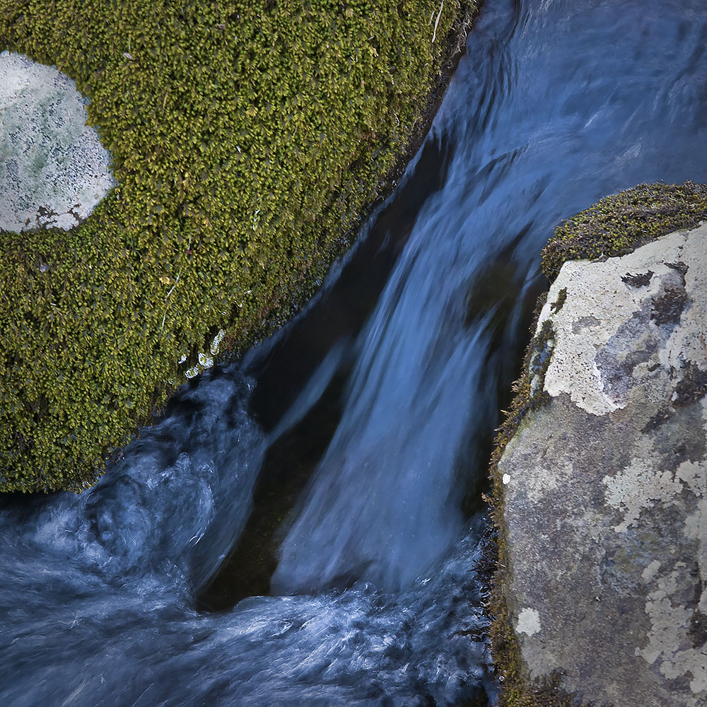 Creek Bed Abstract #54