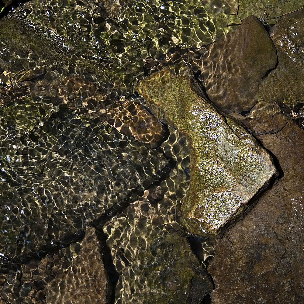 Creek Bed Abstract #56