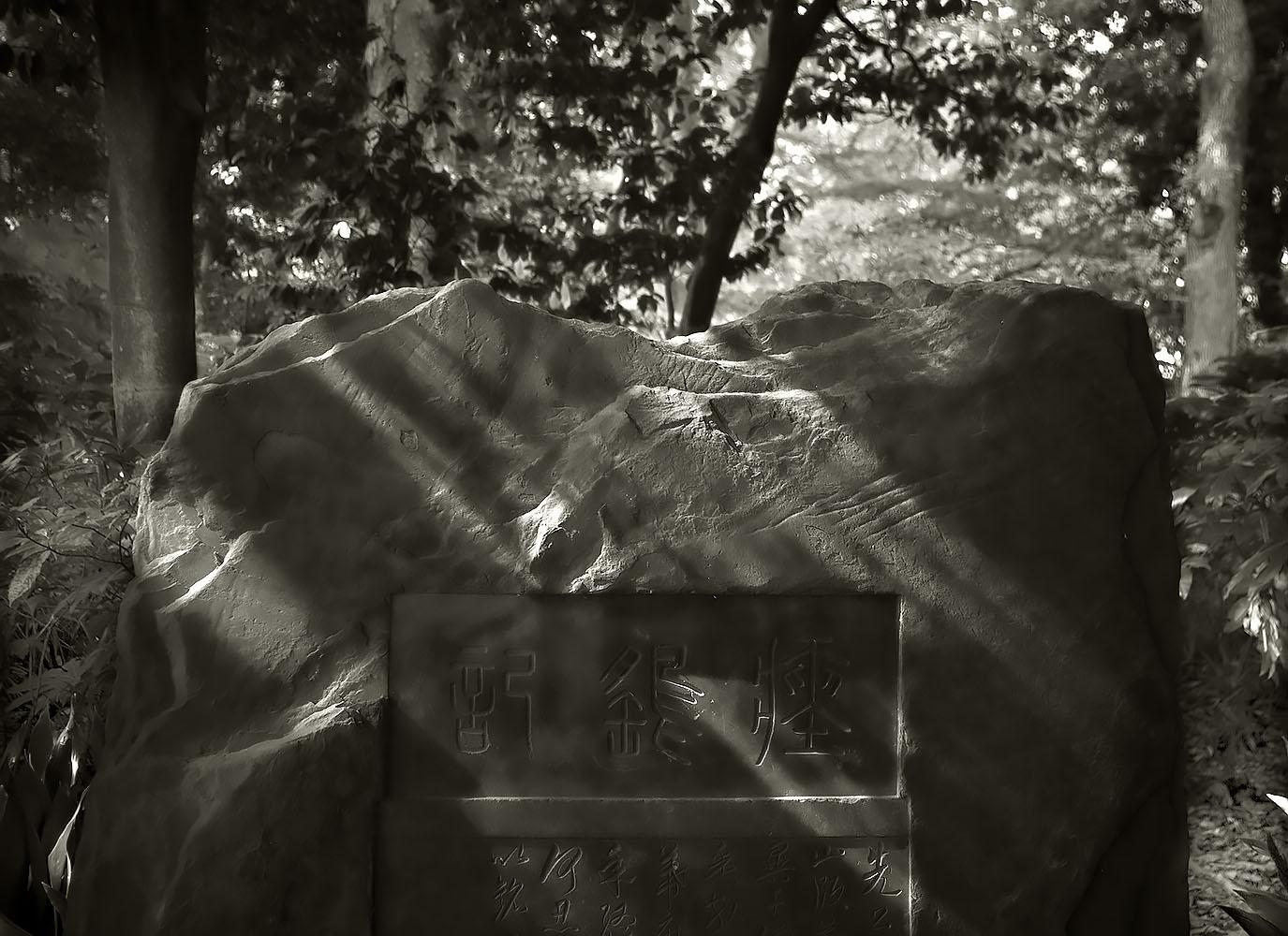 Japanese Garden Project #10
