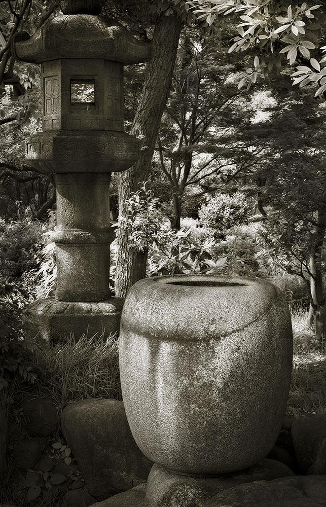 Japanese Garden Project #9