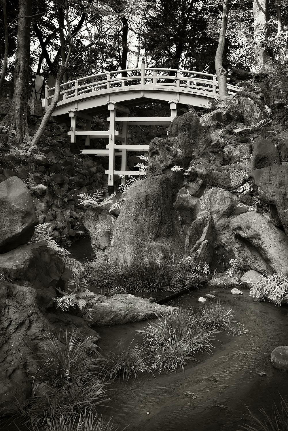 Japanese Garden Project #7