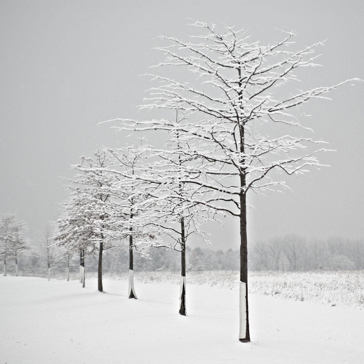 warminster_14.jpg