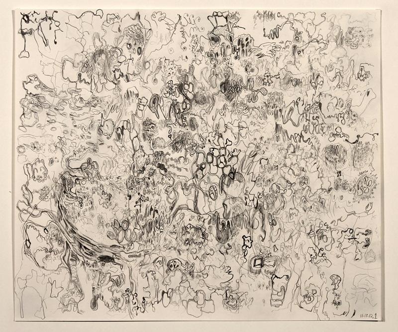 Untitled (11-17-12.1)