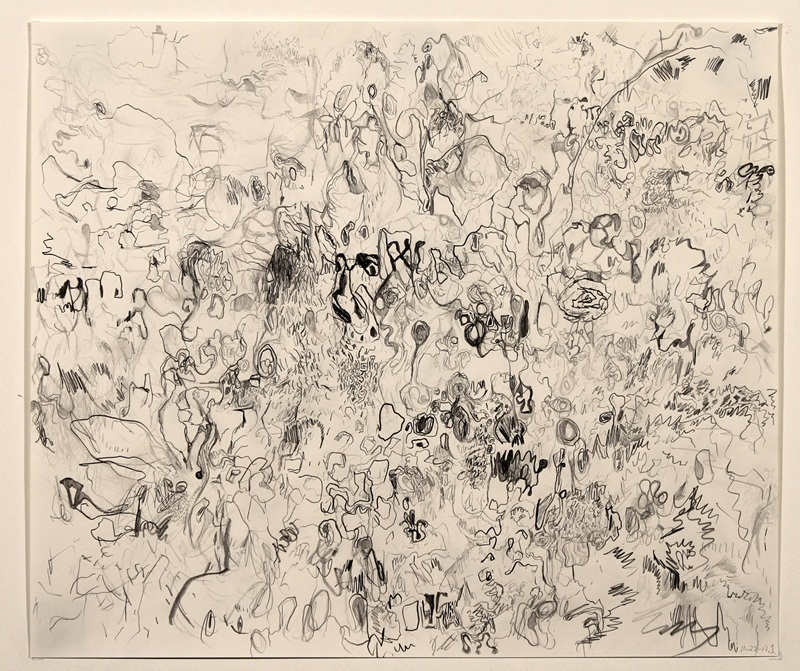 Untitled (11-22-12.1)