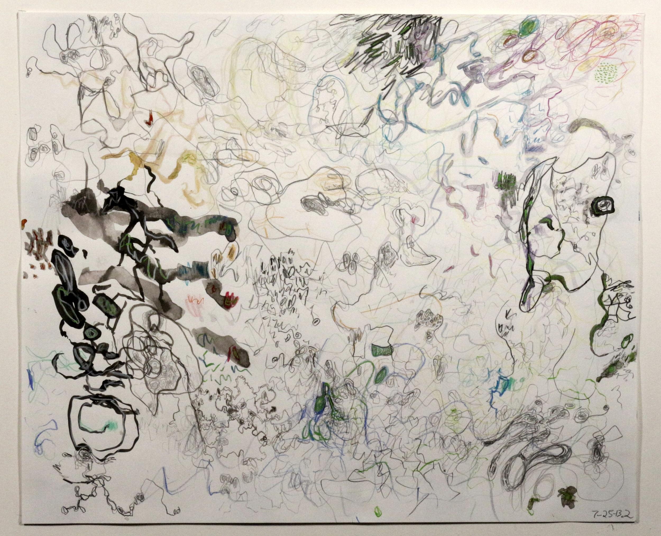Untitled (7-25-13.2)