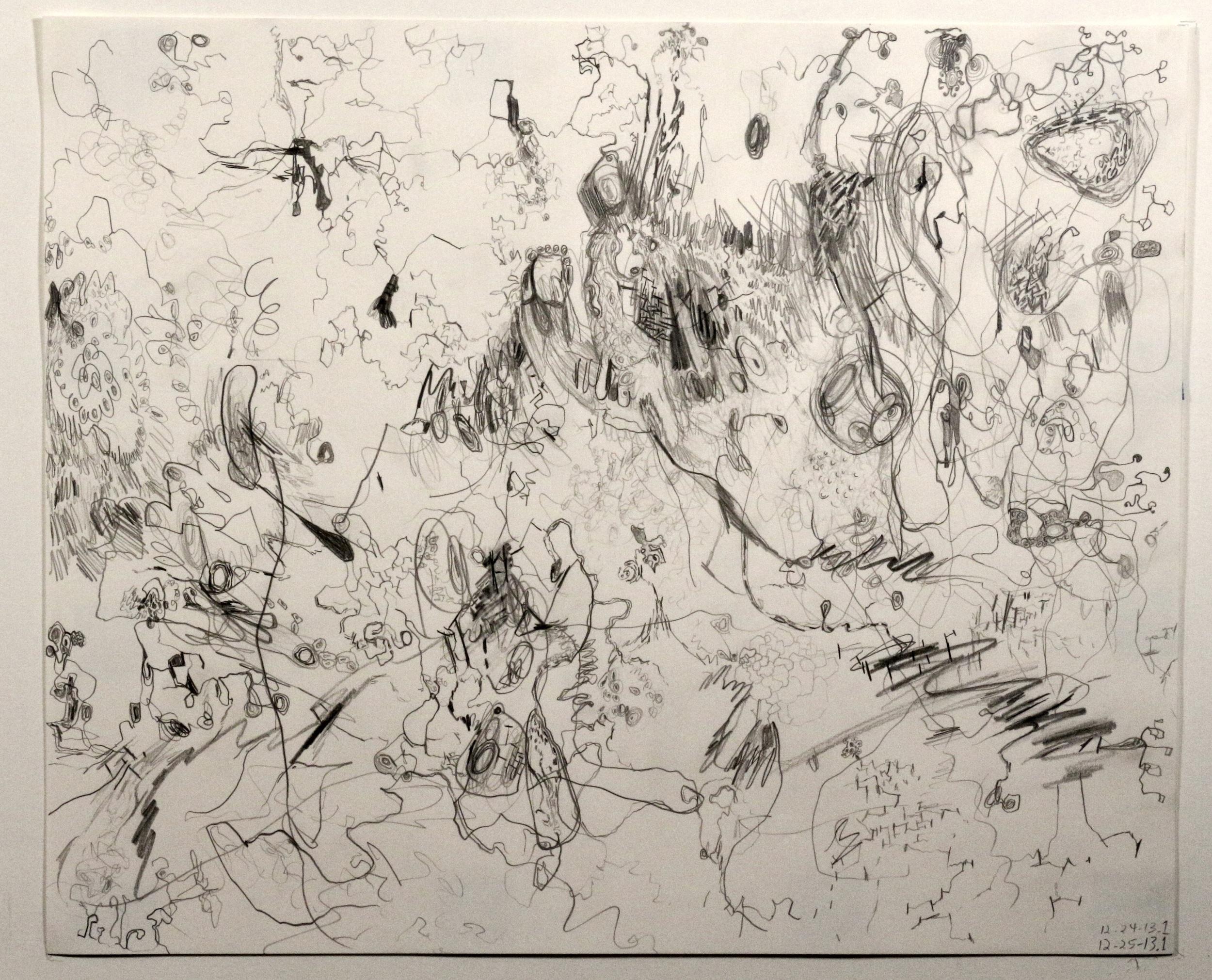 Untitled (12-24-13.1)