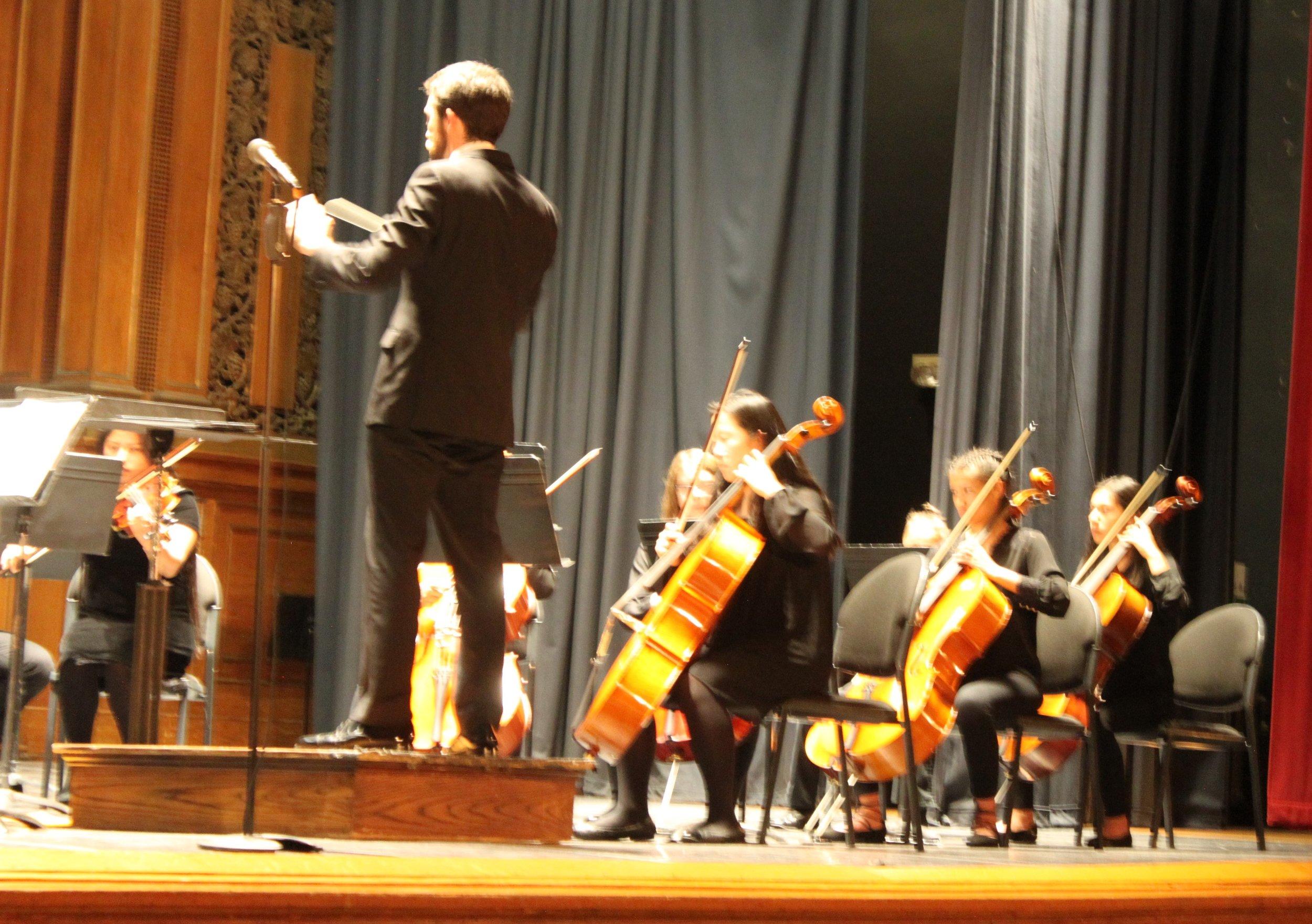 NVYS cellos.jpg
