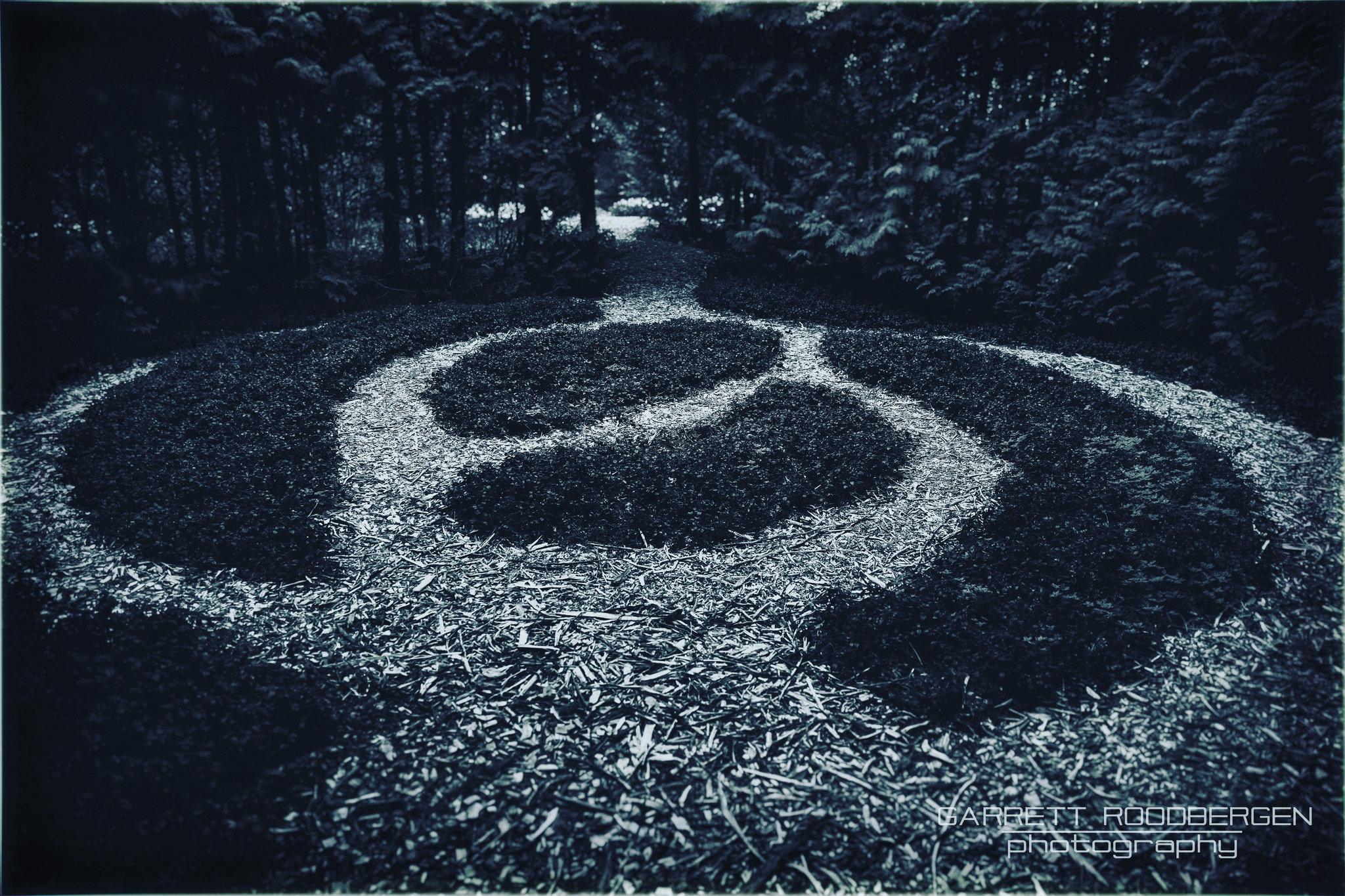 The Grove in the Garden #grandhotel #mackinacisland #mackinac #puremichigan #michigan #photographyislife #photography #grove #clearing #woods #forest #garden #mystery #hidden #adobe #canon #5dmarkiii #vacation #adventure