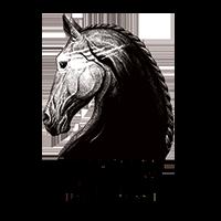 DarkHorse_Logo.png
