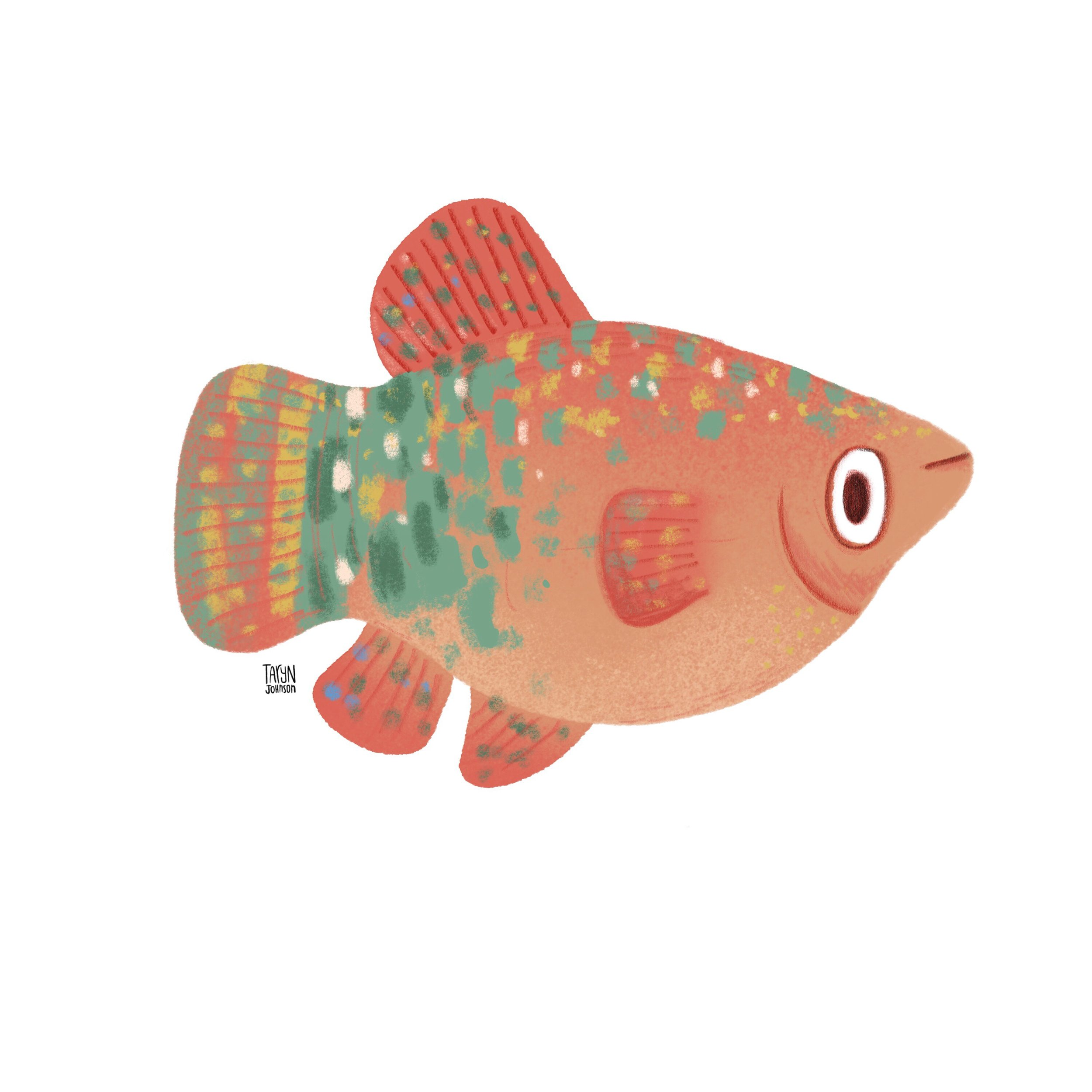6/100 a speckled fish