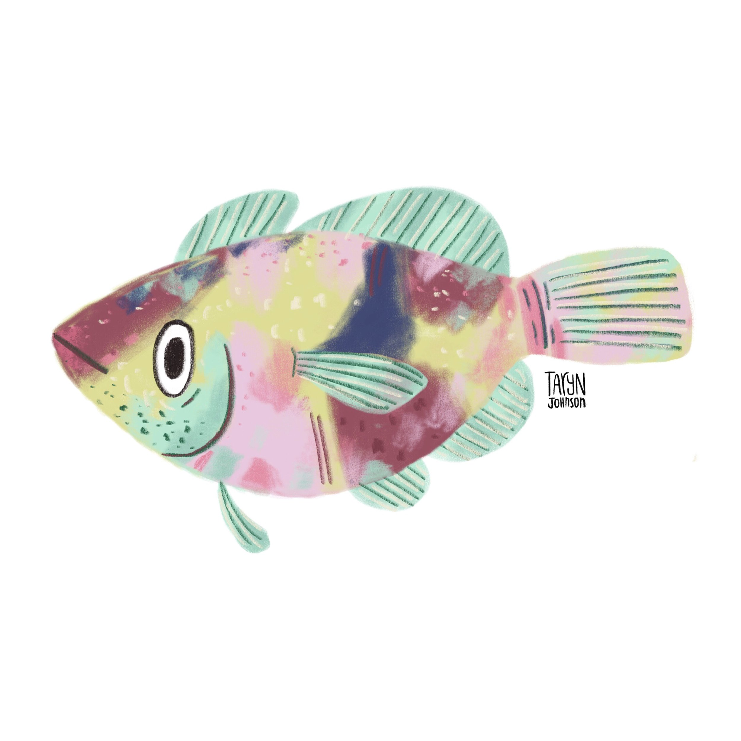 7/100 a funky fish