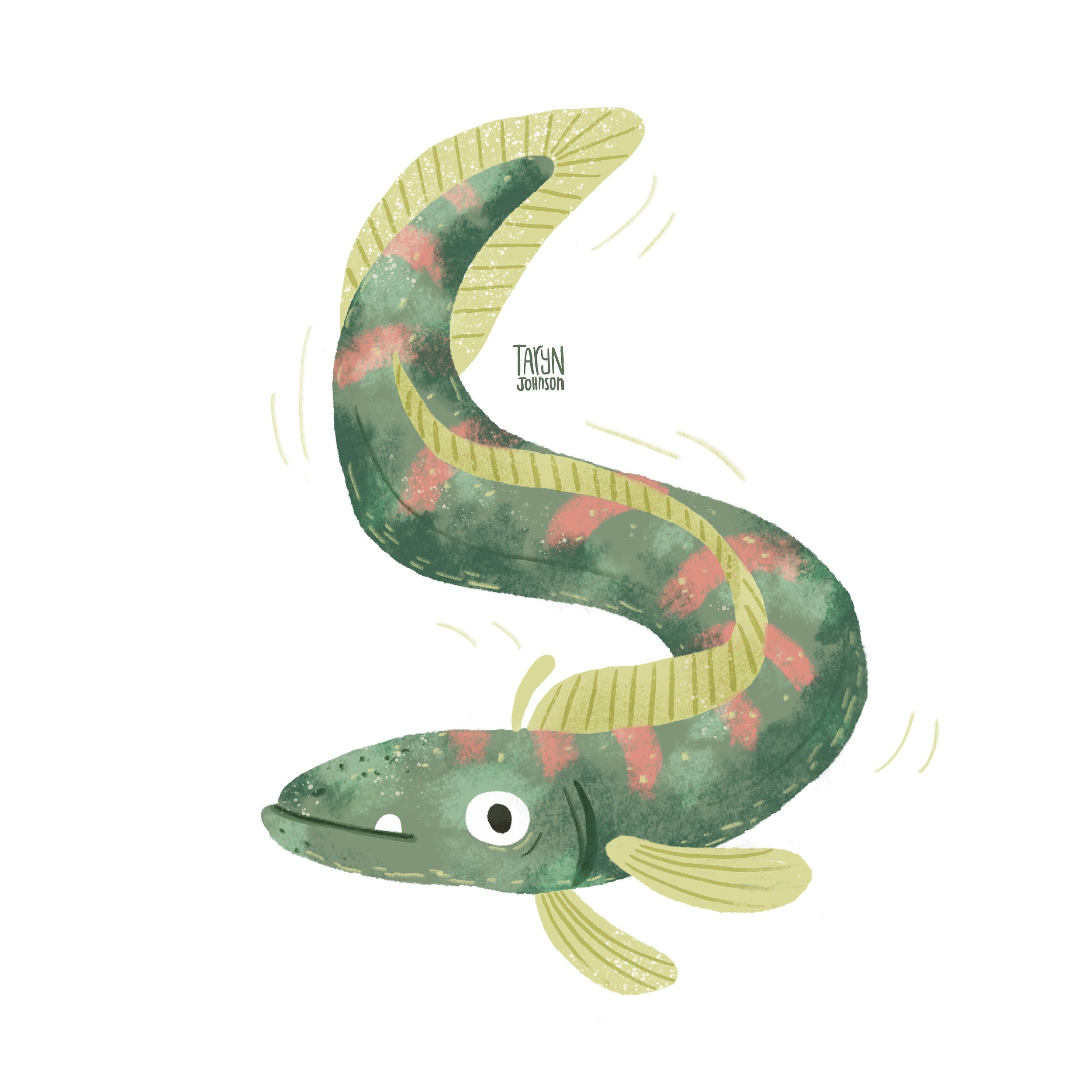 13/100 a wiggly fish