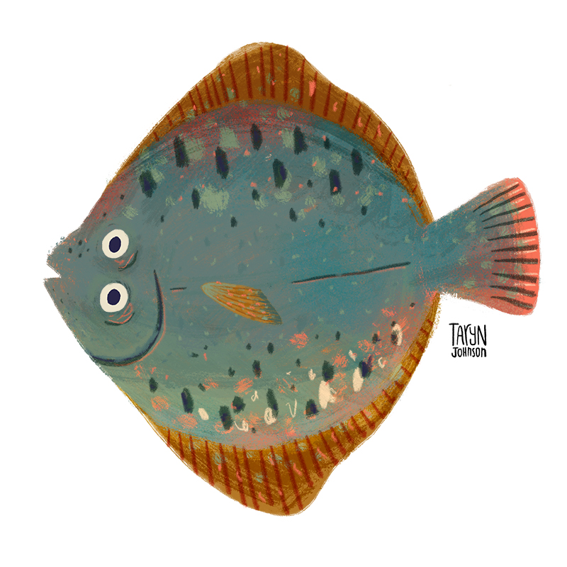 Fish034_tarynjohnson.jpg